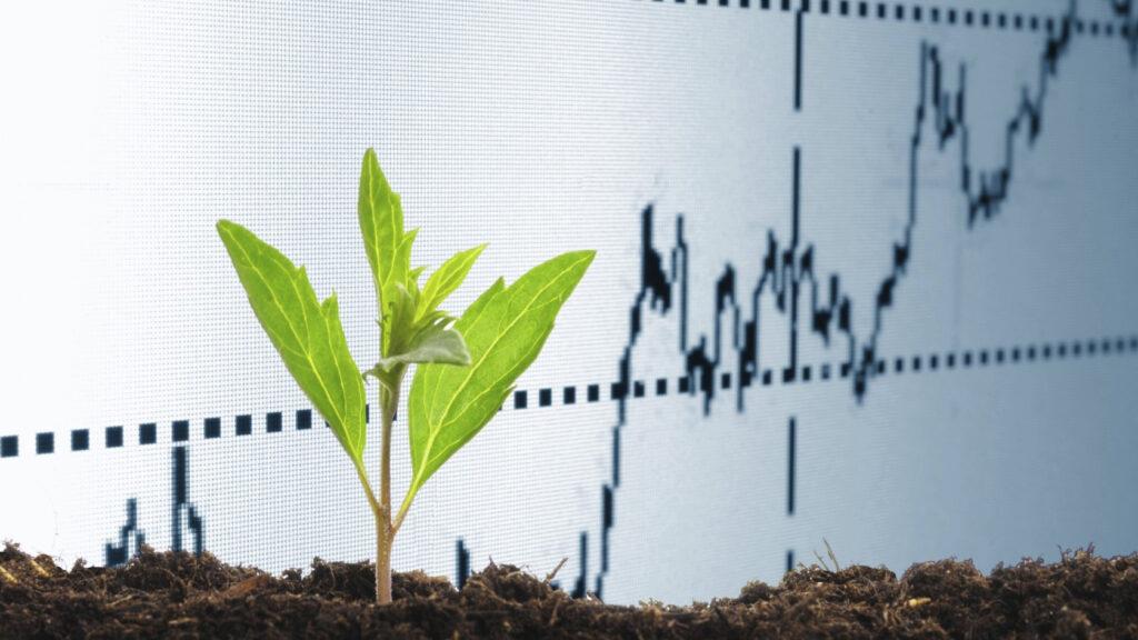 Similitudes y diferencias entre gasto e inversión